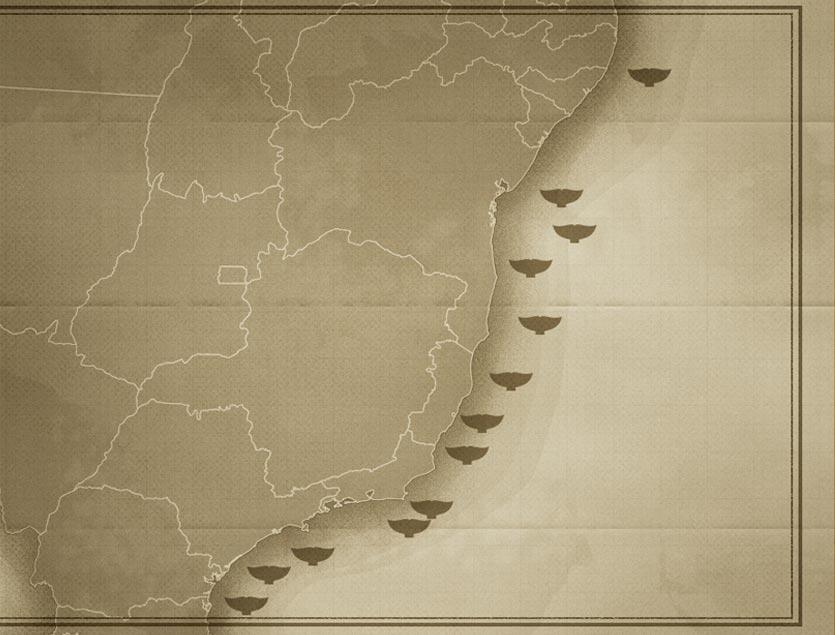 Avistamentos de baleias-de-bryde em toda costa Brasileira